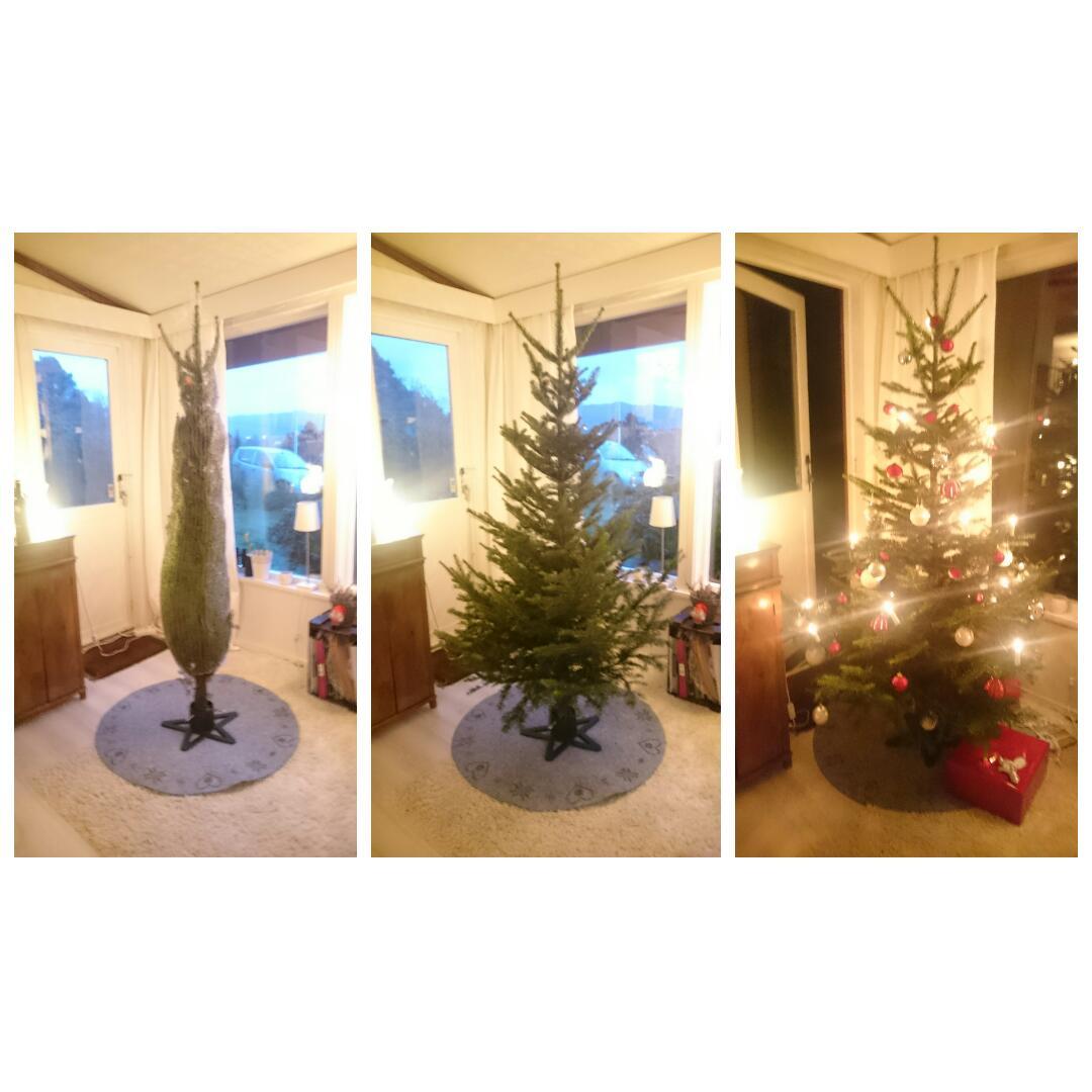 Årets surprise-juletre!